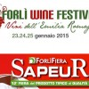 "All'interno di SAPEUR il ""Wine Festival Forlì"""