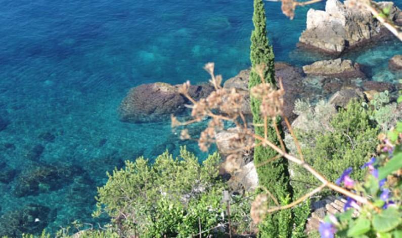 La Calabria tra Agricoltura e Turismo