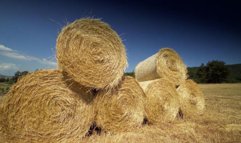 La P.A.C. – Politica Agricola Comune –