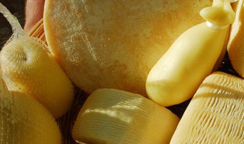 Food: Frutta e Formaggi montano il contachilometri