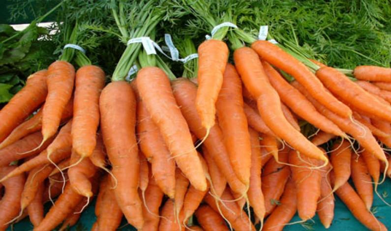 Dieta Mediterranea: la carota salutare
