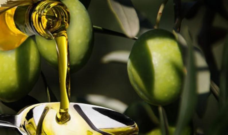 Premiate due aziende cosentine del Sol & Agrifood a Vinitaly 2013