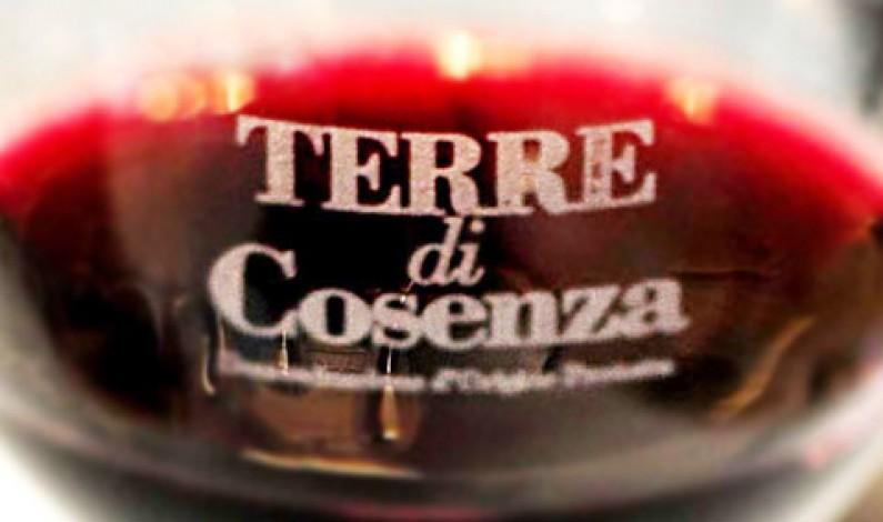 Terre di Cosenza a Vinitaly: il dolce esordio