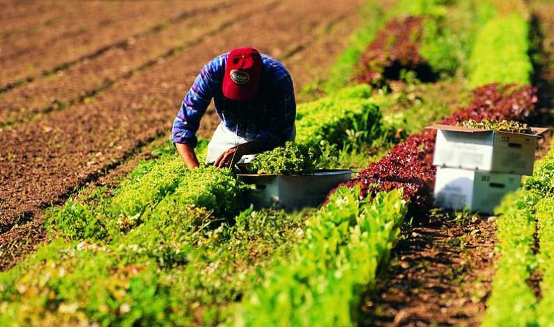 Nuova Campagna dell'UE: l'agricoltura nella la vita di tutti i giorni