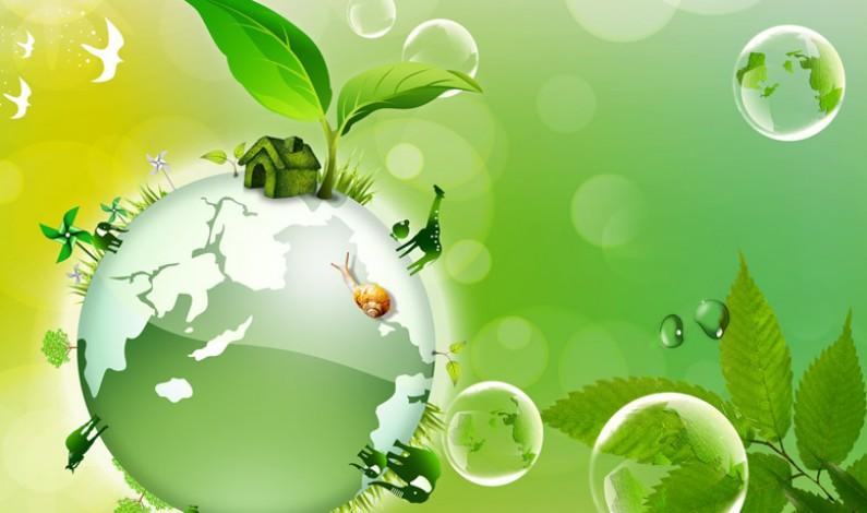 La Green Economy per battere la crisi