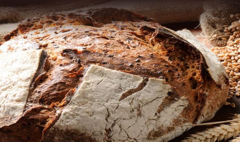 Grande Festa del Pane, Olio, Vino e Dieta Mediterranea