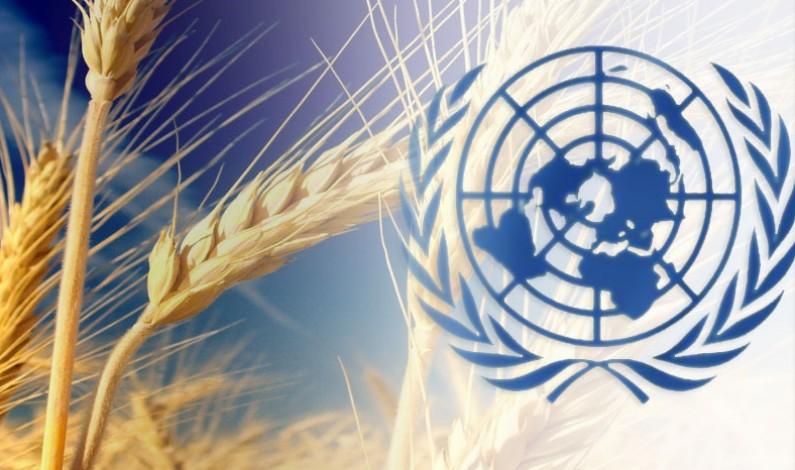 ONU si mobilita per combattere le Malattie non Trasmissibili. DiBEST UNICAL si fa avanti