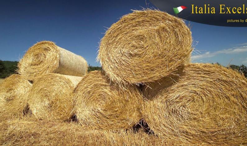 Contro la Fame Piccola Agricoltura: l'Appello dell'Oxfam
