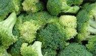 Germogli di broccoli un'arma contro il cancro al seno