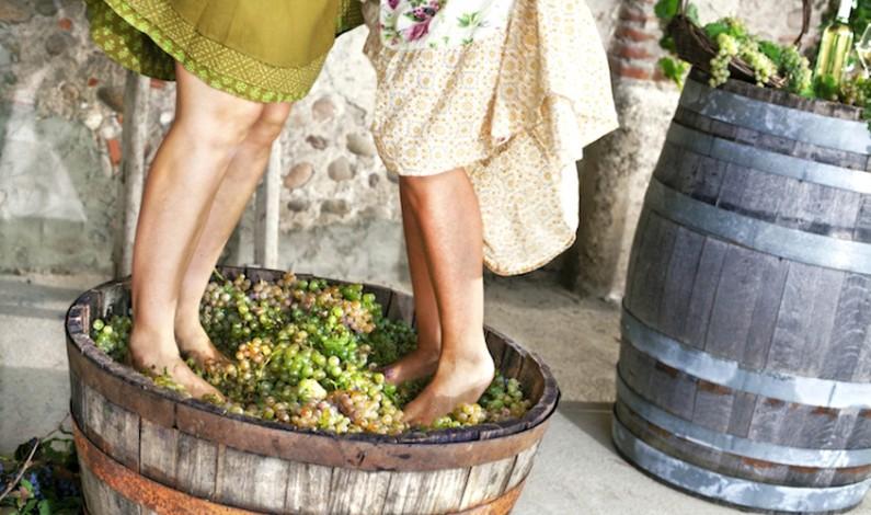 I wine lovers riscoprono i vini macerati