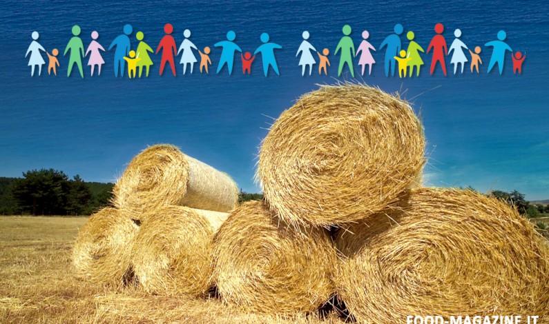 Sociologi: la Dieta Mediterranea non è solo Cibo. Prende vita il Convegno ANS di Lamezia Terme